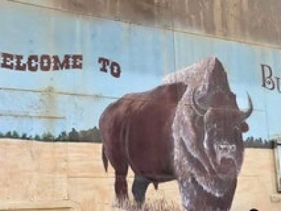 FT7UwvWn-Buffalo-Main-Image